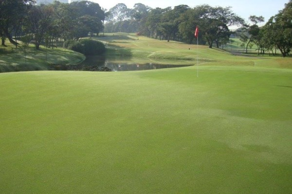 Par3 of the the golf course of the Sao Paulo golf club.