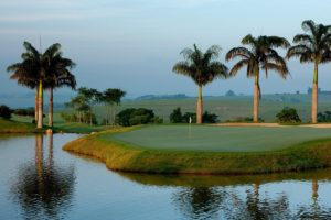 Island grenn of the Randall Thompson golf course of the Boa Vista golf club.