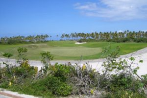 Green of the course of the Iberostar Praia Forte golf club.